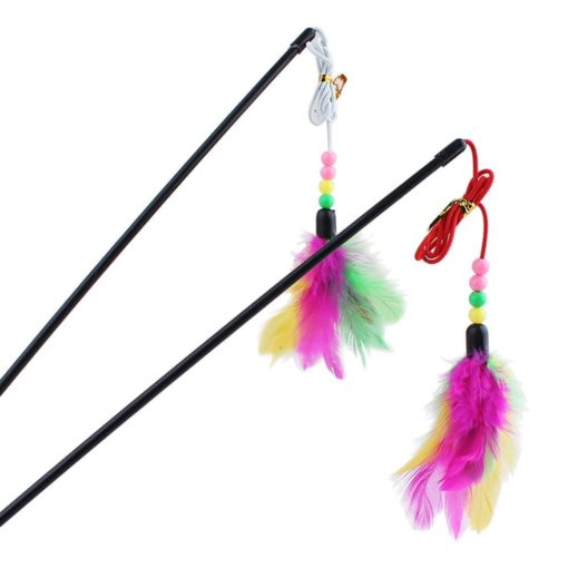 Feather Dangler - pawsandtails.pet