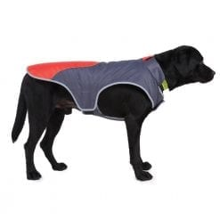 Red & Dark Grey Coat - pawsandtails.pet