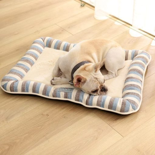 Blue Stripped Cushion - pawsandtails.pet