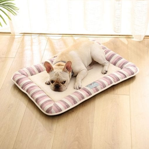 Pink Stripped Cushion - pawsandtails.pet