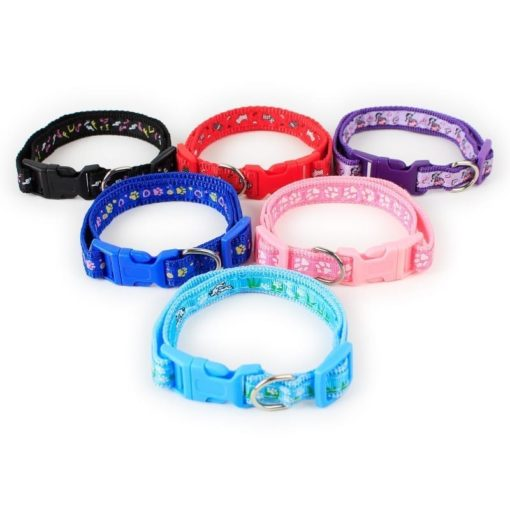 Small Collar – Paws Style - pawsandtails.pet