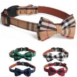 Collar With Bow - pawsandtails.pet