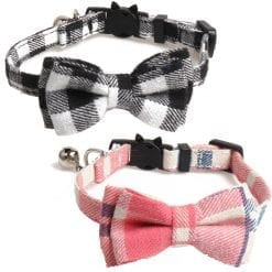 Bow Collars - pawsandtails.pet