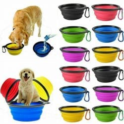 Portable Dual Chamber Bottle With Collapsable Bowl - pawsandtails.pet