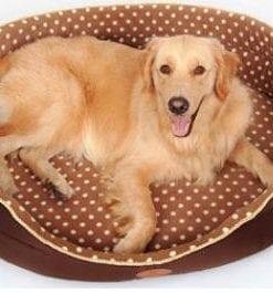 Soft Brown Orthopedic Pet Dog Cat Bed - pawsandtails.pet