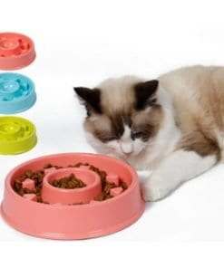 Pet Bowl Dog Cat Interactive Slow Food Feeder Round Feed Dish - pawsandtails.pet