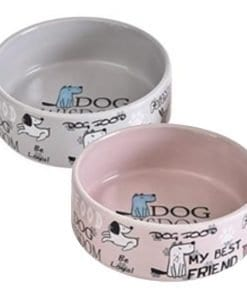 Ceramic Best Friend Pet Bowl for Dog – Food or Water Bowl - pawsandtails.pet