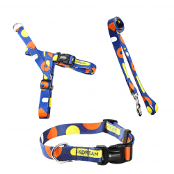 Blue Spotted Harness, lead & Collar