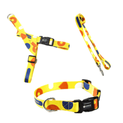 Yellow Spotted Collar, Harness and Lead set