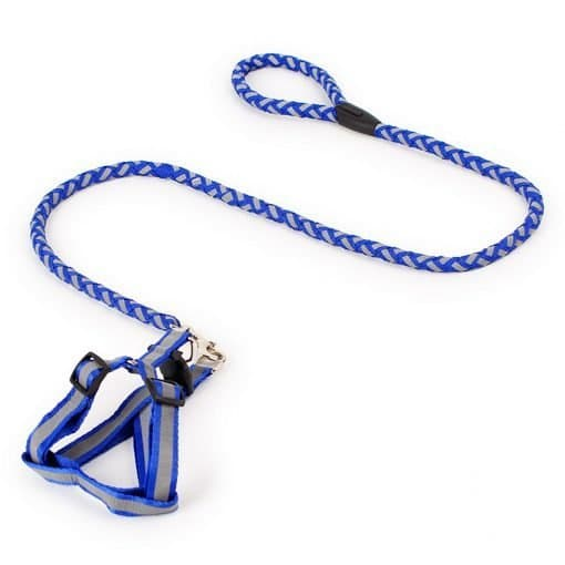 Step-in Safety Nylon Reflective Dog Puppy Adjustable harness ,lead set Blue